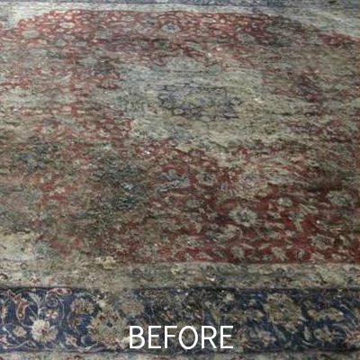 Clearwater, FL area rug cleaning