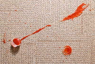 Pro Carpet Carpet Amp Upholstery Stain Removal 866 776
